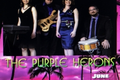 the purple herons flyer