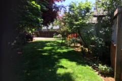 Hineni's back yard